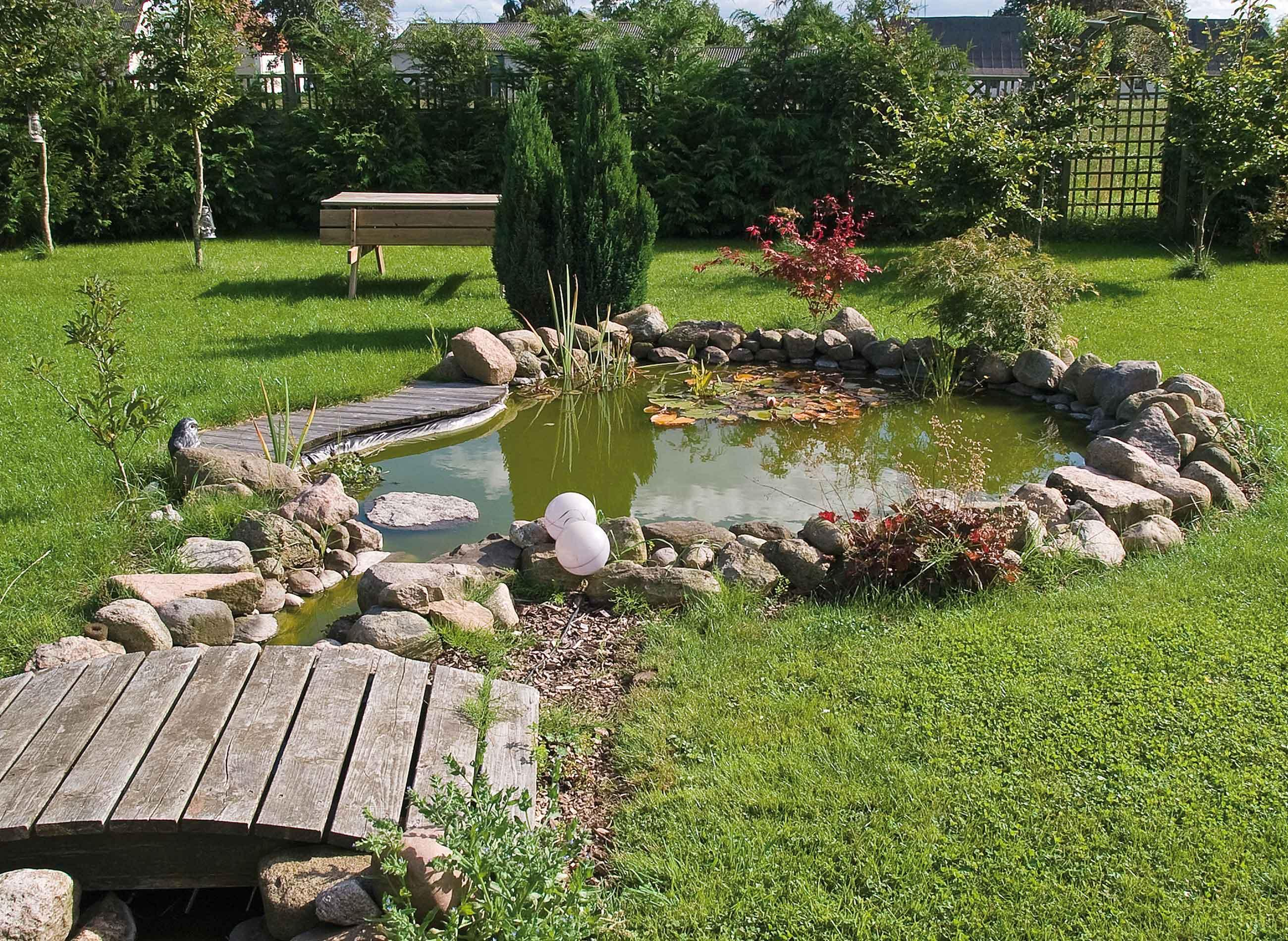 Am nagement bassin ext rieur lille cr ation tang jardin - Photo de bassin de jardin ...